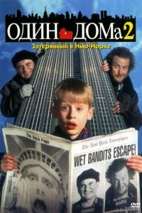 Фильм Один дома 2: Затерянный в Нью-Йорке смотреть онлайн