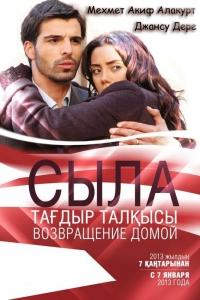 Фильм Сыла. Возвращение домой [1-30] смотреть онлайн