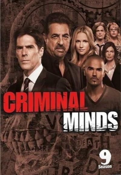 Фильм Мыслить как преступник 9 сезон смотреть онлайн
