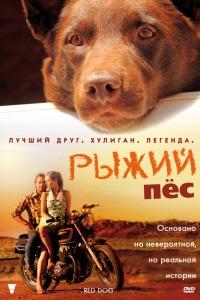 Фильм Рыжий пес смотреть онлайн