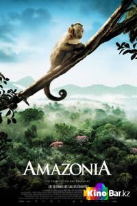 Фильм Амазония смотреть онлайн