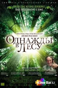 Фильм Однажды в лесу смотреть онлайн