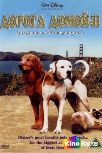 Фильм Дорога домой 2: Затерянные в Сан-Франциско смотреть онлайн