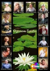 Фильм Одолень-трава смотреть онлайн