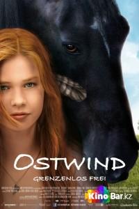 Фильм Восточный ветер смотреть онлайн
