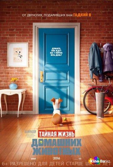 Фильм Тайная жизнь домашних животных смотреть онлайн