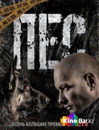 Фильм Пёс 20 серия смотреть онлайн