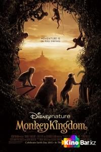 Фильм Королевство обезьян смотреть онлайн