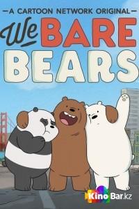 Фильм Мы обычные медведи 2 сезон смотреть онлайн