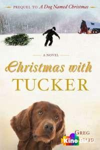 Рождество с Такером