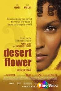 Фильм Цветок пустыни смотреть онлайн