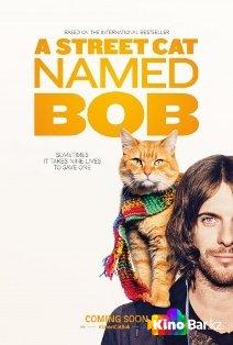 Фильм Уличный кот по кличке Боб смотреть онлайн