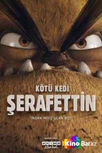 Фильм Плохой кот Шерафеттин смотреть онлайн