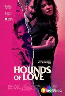 Фильм Гончие любви смотреть онлайн