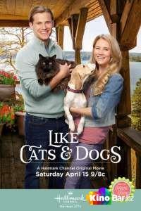 Фильм Как кошка с собакой смотреть онлайн