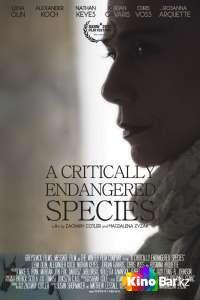 Фильм Виды под угрозой исчезновения смотреть онлайн