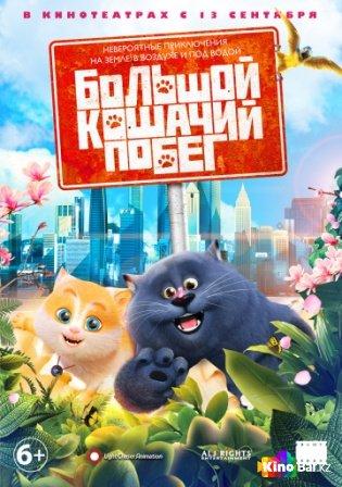 Фильм Большой кошачий побег смотреть онлайн