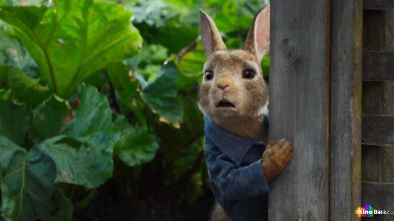Смотрим трейлер «Кролик Питер 2»