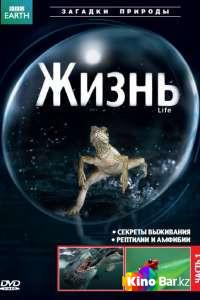 Фильм BBC: Жизнь (все серии по порядку) смотреть онлайн