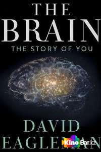 Фильм Мозг с Дэвидом Иглменом (все серии по порядку) смотреть онлайн