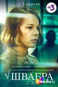 Швабра 1 сезон 1-8 серия (2019)